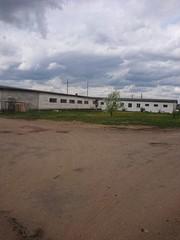 Аренда производственного помещения г. Жодино.